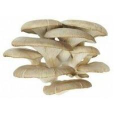 Вешенки свежие резаные, 300 г